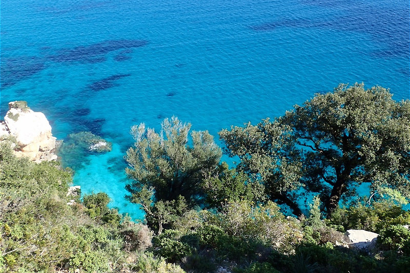 The nature in Sardinia