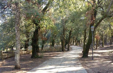 ogliastra_inverno_camping_la_pineta